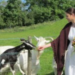 Hoping for some glorious sunshine for this weekend's summer sketching at the Ulster American Folk Park. Last year we had beautiful weather at the Folk and Transport Museum where Linda Logan captured this photograph of Clare feeding the goats.